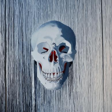 """Crâne en noir et blanc """"Bonnet blanc, blanc bonnet"""" Acryl/toile 100/80X3"""